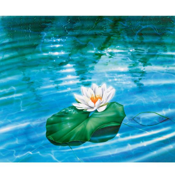 Airbrush illustratie Waterlelie